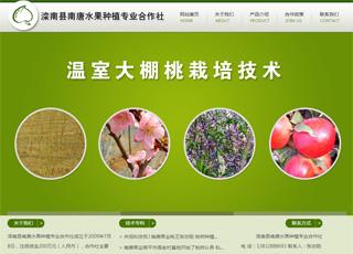 唐山市滦南县南唐水果种植专业合作社网站